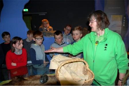 Mammutmuseum 1