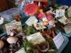 Pilze Ausstellung 1
